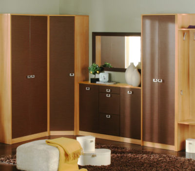 wardrobe-designs-for-bedroom-in-india-cupboard-designs-for-cheap-cabinet-designs-for-bedrooms